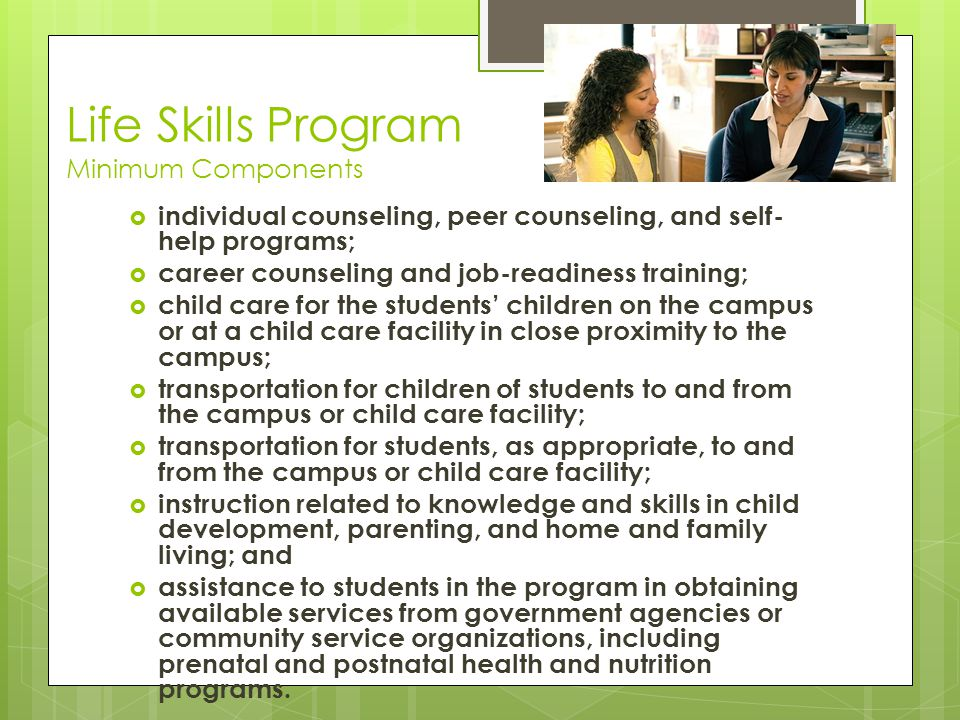 Life Skills Program Minimum Components