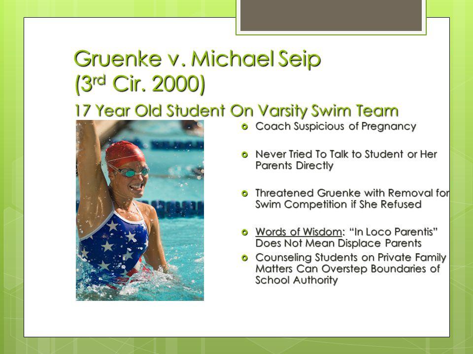 Gruenke v. Michael Seip (3rd Cir