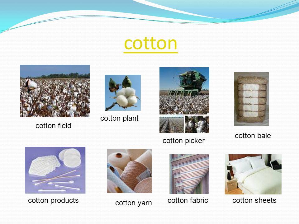 cotton cotton plant cotton field cotton bale cotton picker