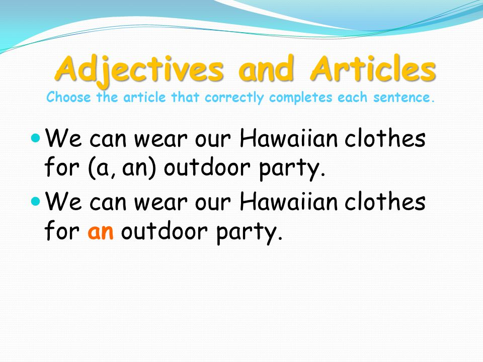 Adjectives and Articles Choose the article that correctly completes each sentence.