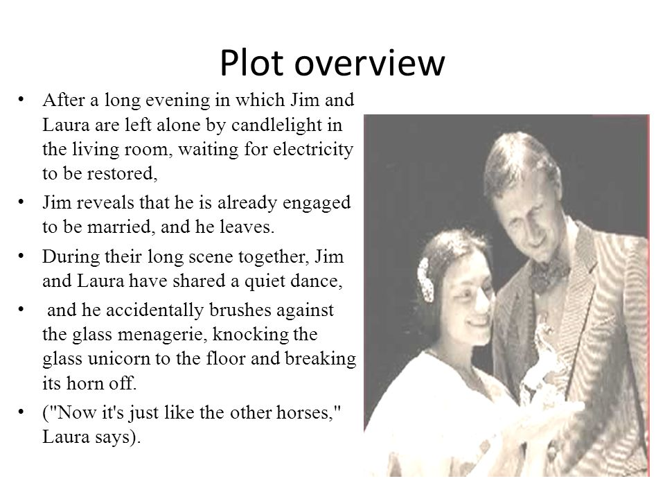 Plot overview After a long evening in which Jim and Laura are left alone by candlelight in the living room, waiting for electricity to be restored,