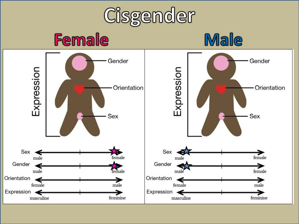 Cisgender Female Male
