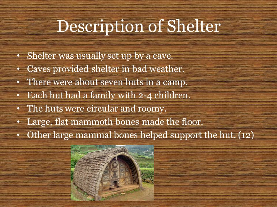 Description of Shelter