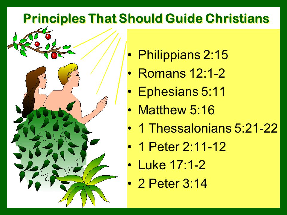 Principles That Should Guide Christians