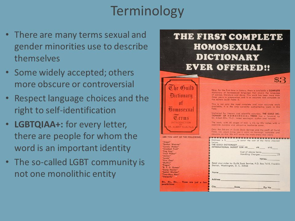 Terminology There are many terms sexual and gender minorities use to describe themselves. Some widely accepted; others more obscure or controversial.