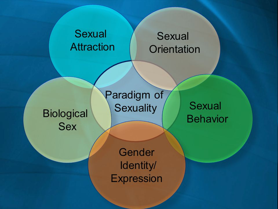 Sexual Attraction. Sexual. Orientation. Paradigm of. Sexuality. Sexual. Behavior. Biological.