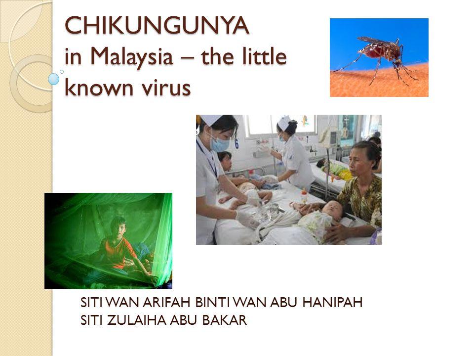 CHIKUNGUNYA in Malaysia – the little known virus