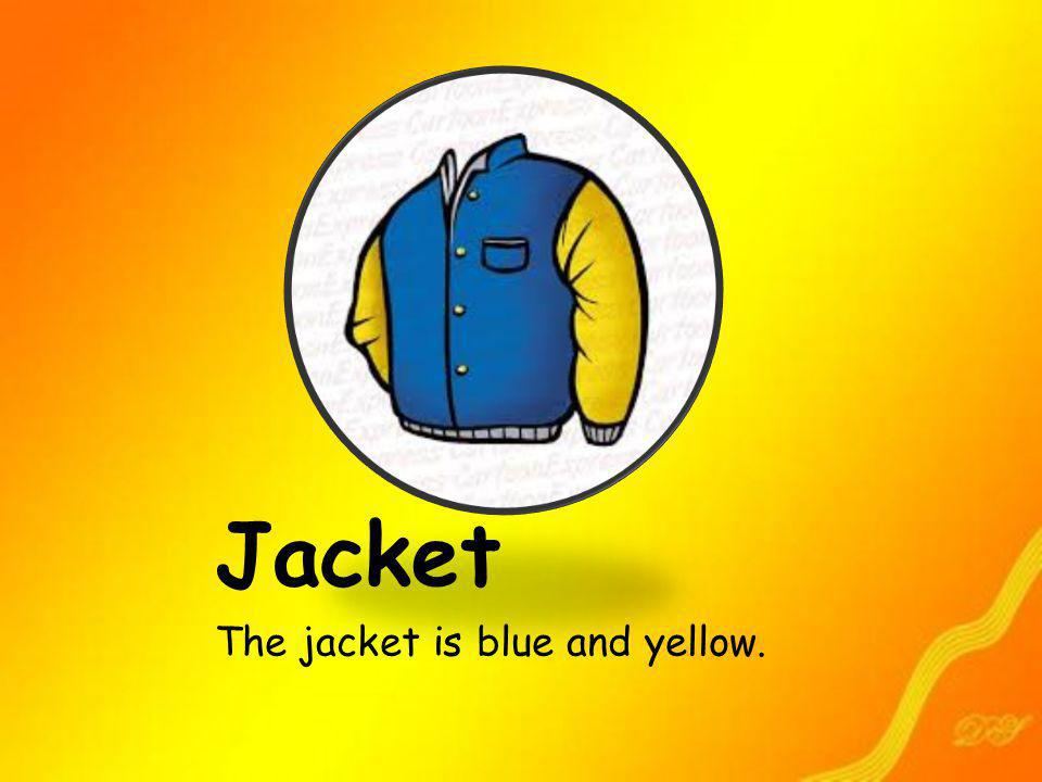 Jacket The jacket is blue and yellow.