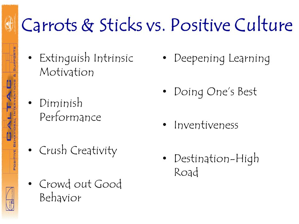 Carrots & Sticks vs. Positive Culture