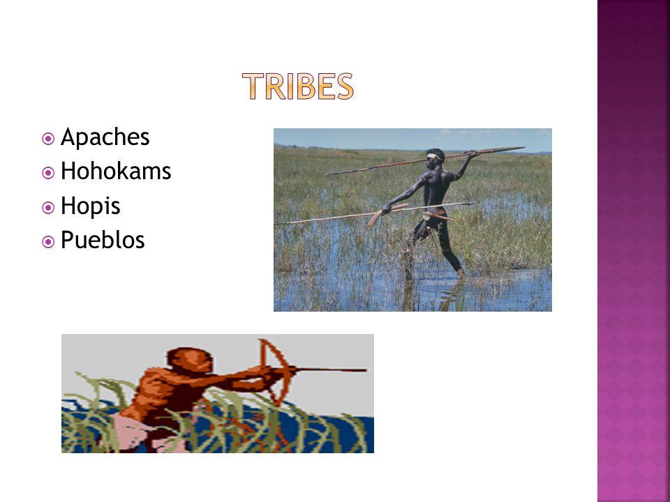 Tribes Apaches Hohokams Hopis Pueblos