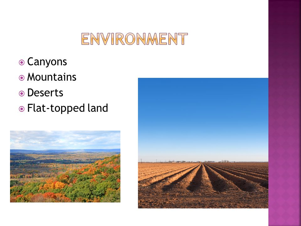 Environment Canyons Mountains Deserts Flat-topped land
