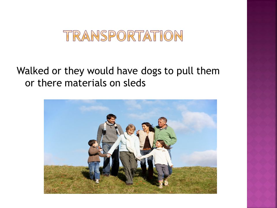 Transportation Walked or they would have dogs to pull them or there materials on sleds