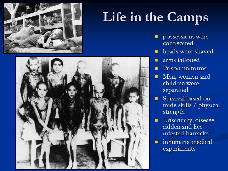 Life in the Camps possessions were confiscated heads were shaved