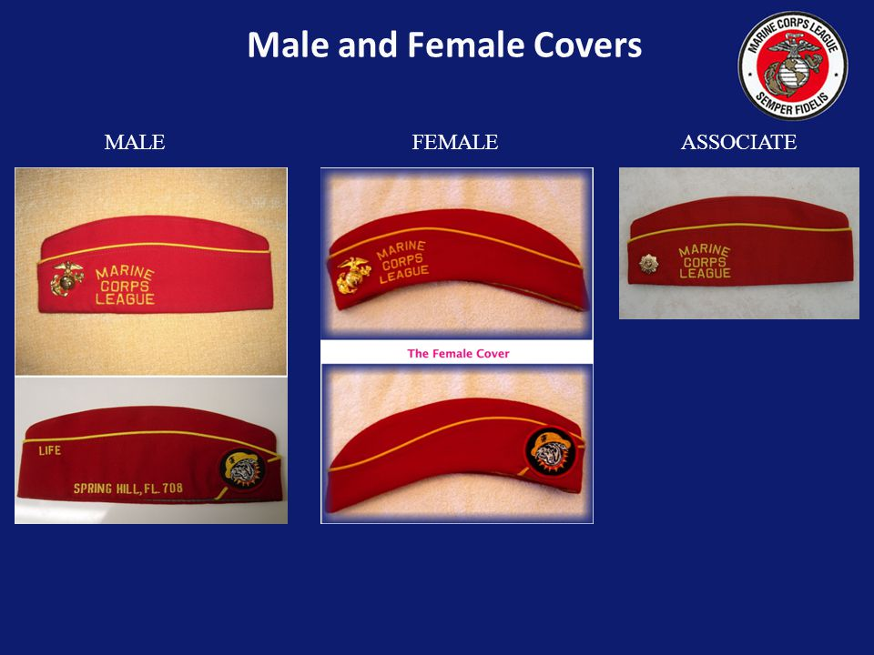 Male and Female Covers MALE FEMALE ASSOCIATE