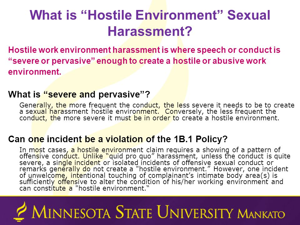 What is Hostile Environment Sexual Harassment