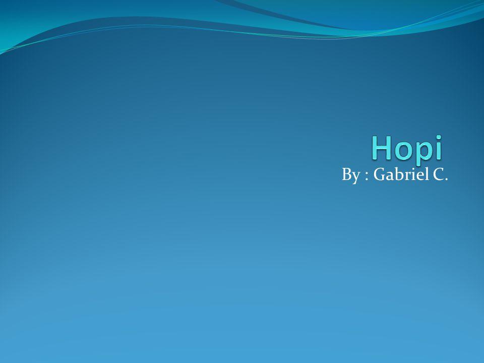 Hopi By : Gabriel C.