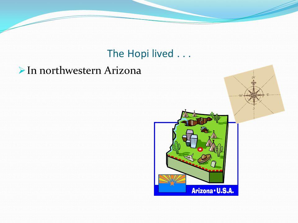 The Hopi lived . . . In northwestern Arizona