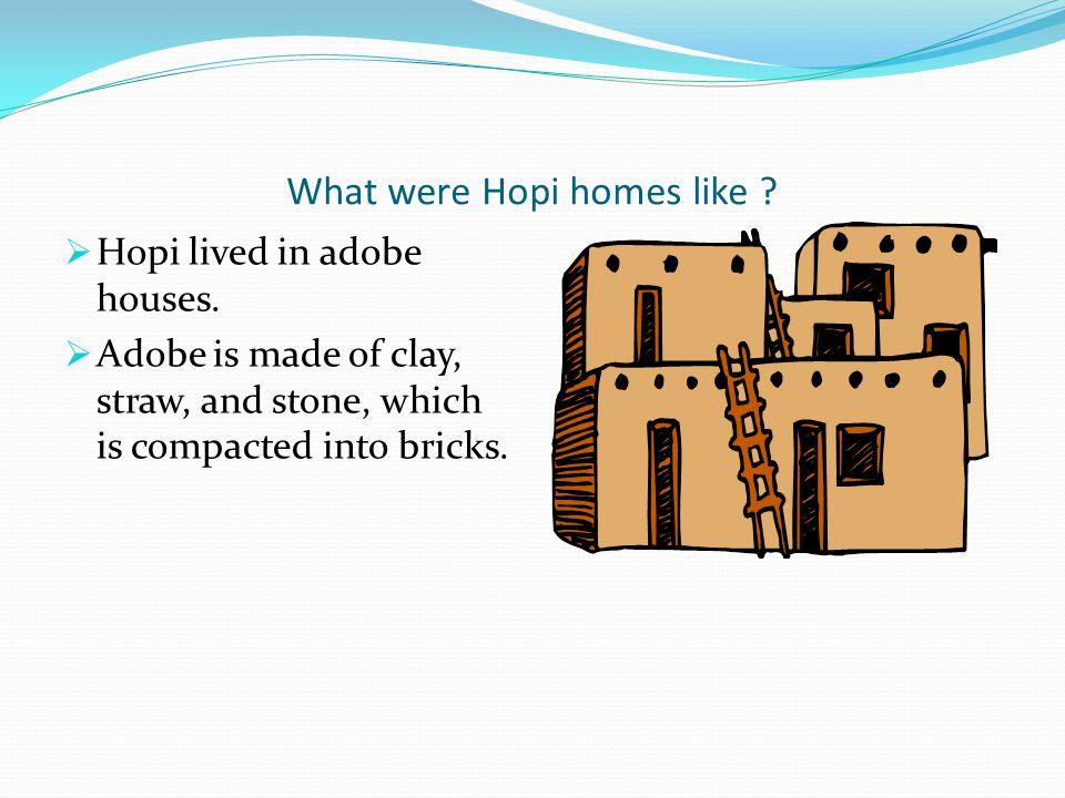 What were Hopi homes like