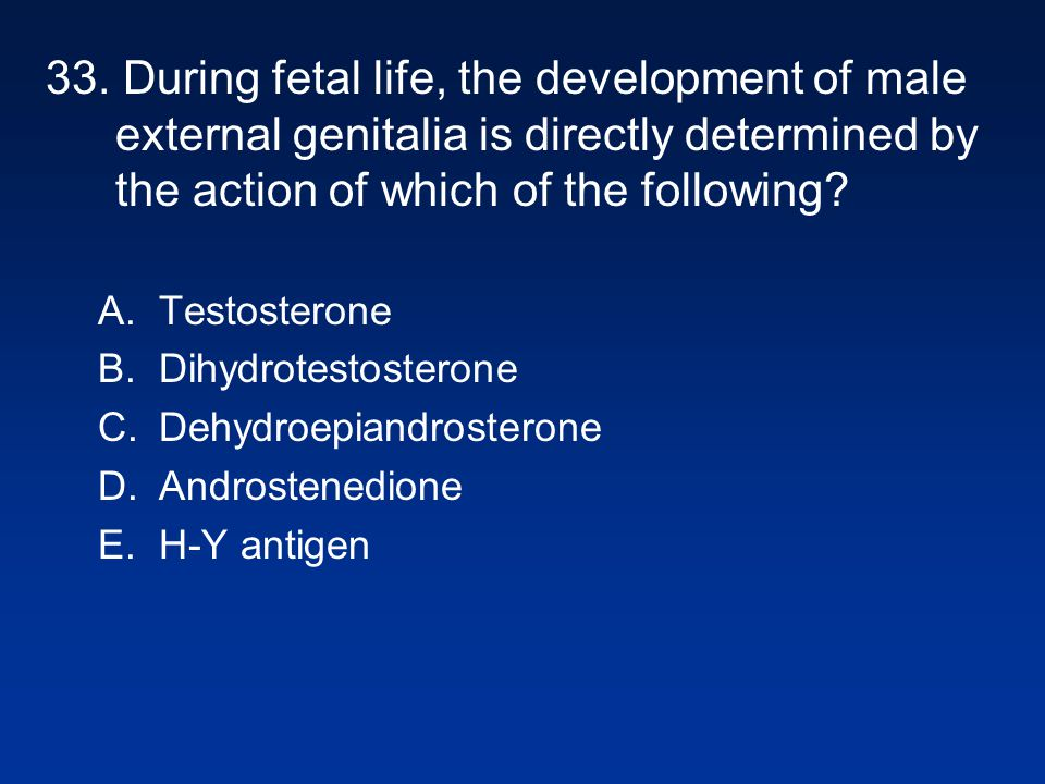 33. During fetal life, the development of male external genitalia is directly determined by the action of which of the following
