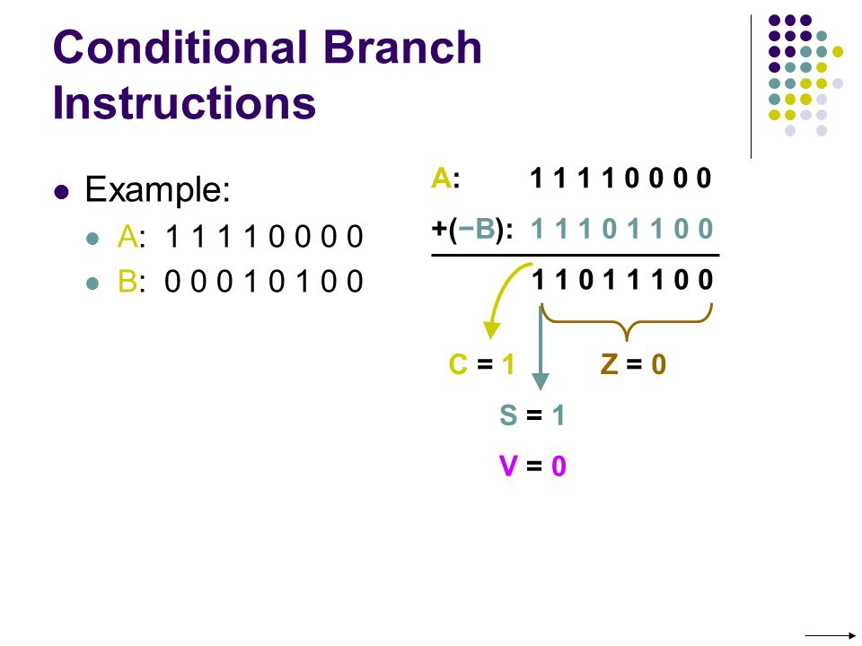 Conditional Branch Instructions