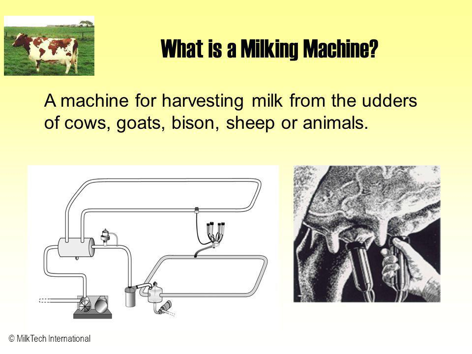 What is a Milking Machine