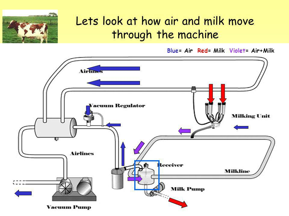 Lets look at how air and milk move through the machine