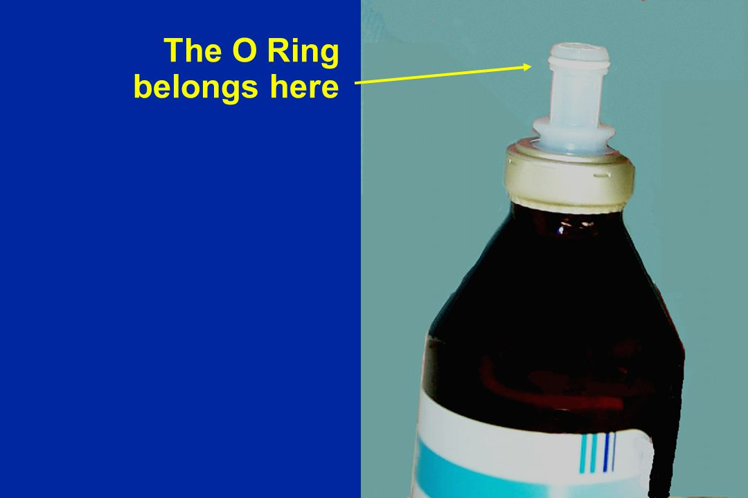The O Ring belongs here