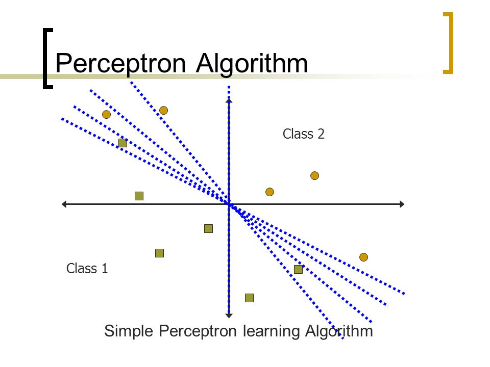 Simple Perceptron learning Algorithm