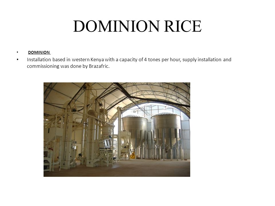 DOMINION RICE DOMINION