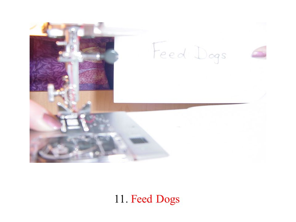 11. Feed Dogs