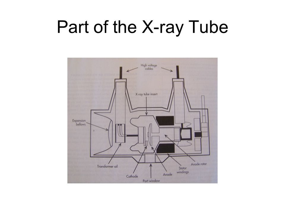 Part of the X-ray Tube