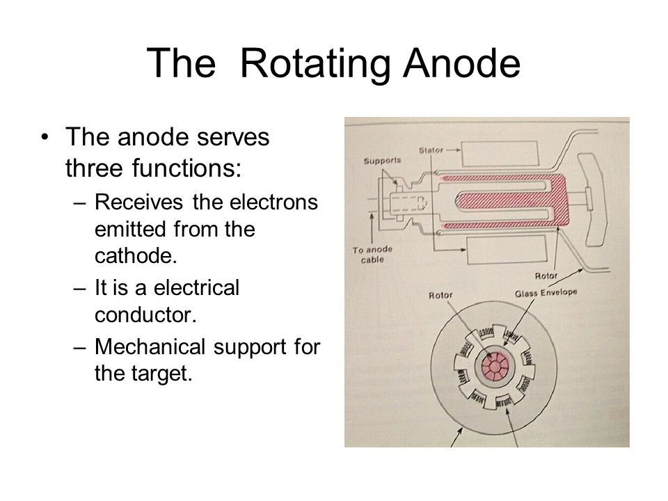 The Rotating Anode The anode serves three functions: