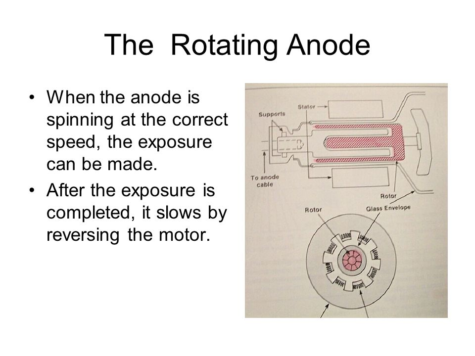 The Rotating Anode When the anode is spinning at the correct speed, the exposure can be made.