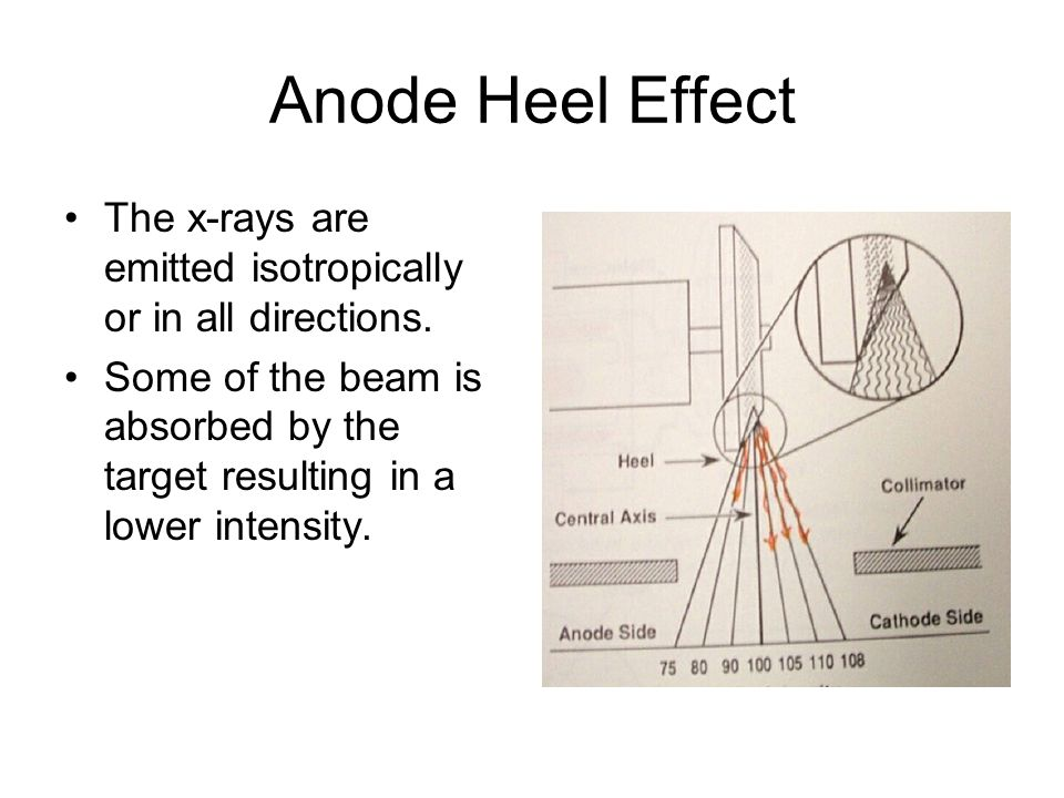 Anode Heel Effect The x-rays are emitted isotropically or in all directions.