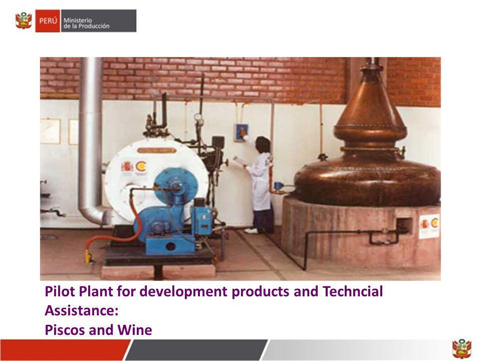 Pilot Plant for development products and Techncial Assistance: