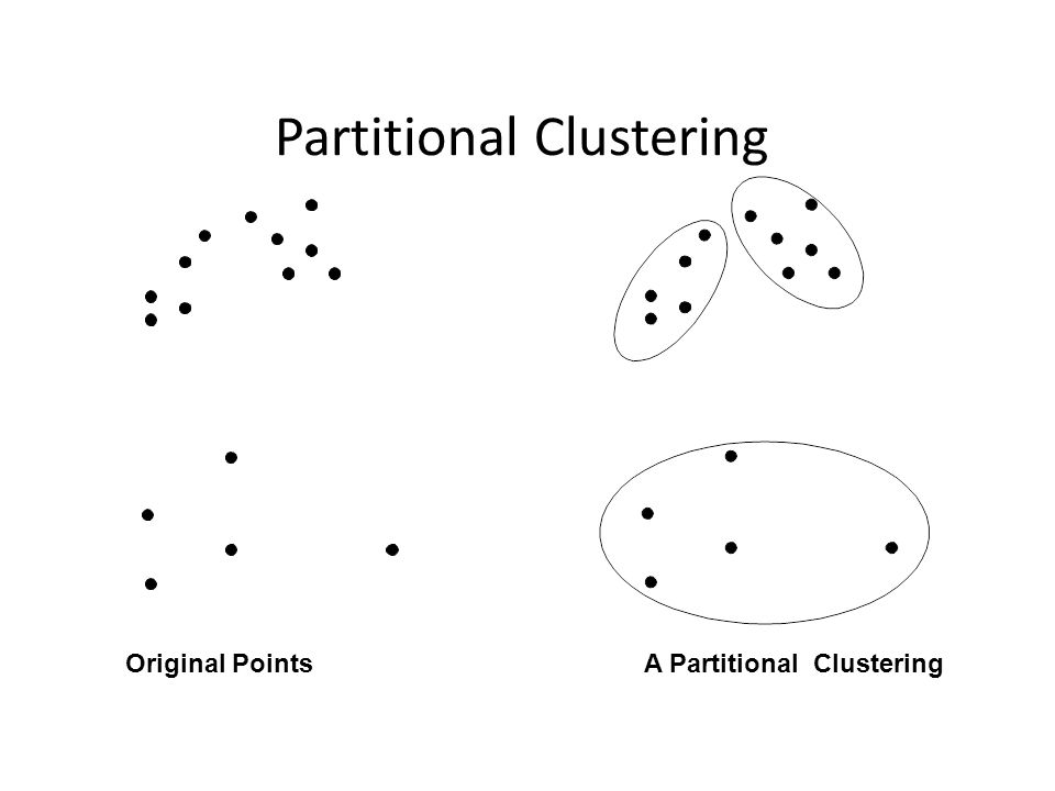 Partitional Clustering