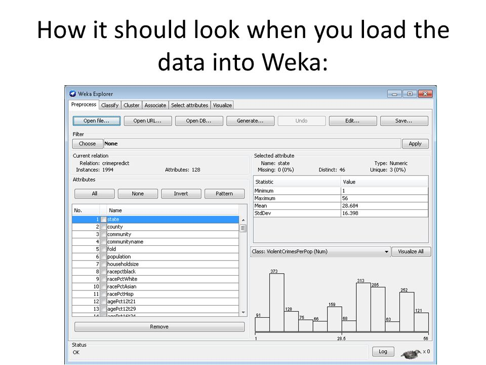 How it should look when you load the data into Weka: