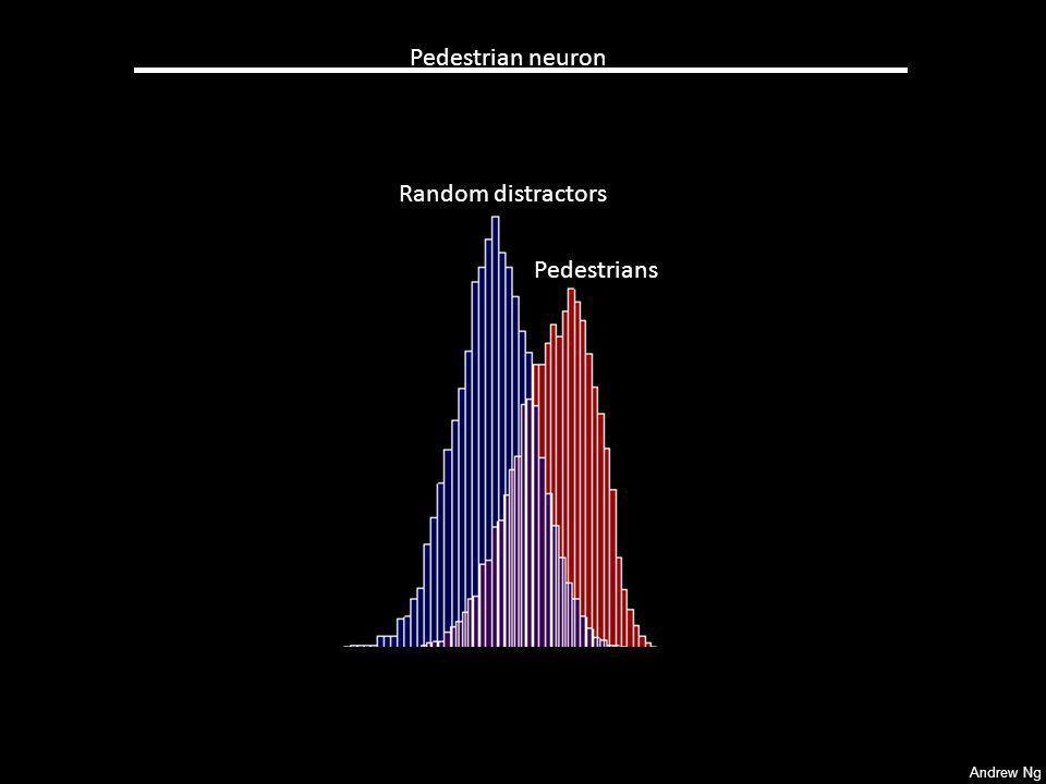 Pedestrian neuron Random distractors Pedestrians