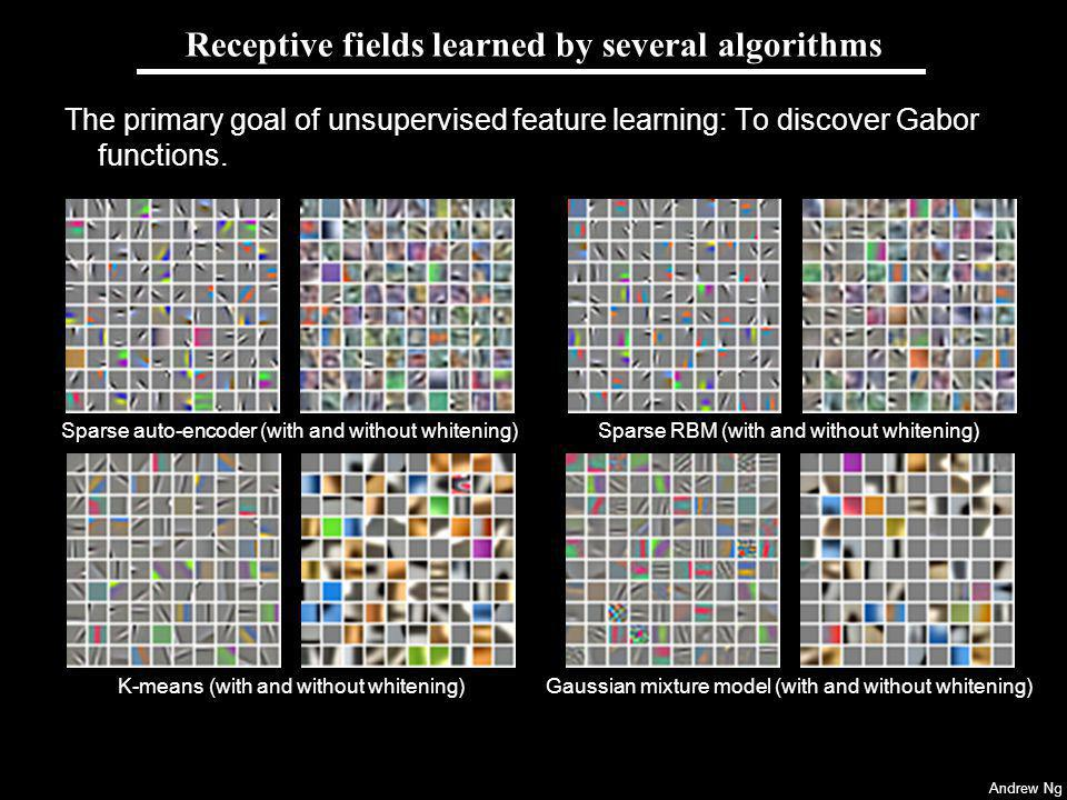 Receptive fields learned by several algorithms