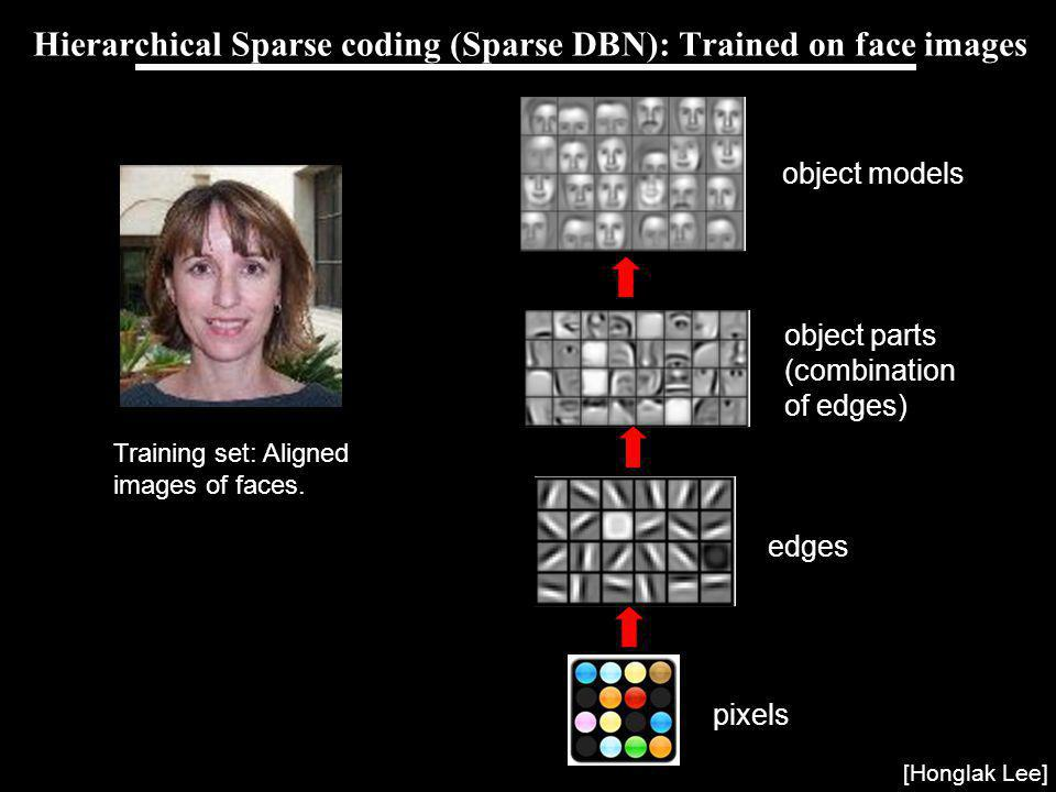 Hierarchical Sparse coding (Sparse DBN): Trained on face images