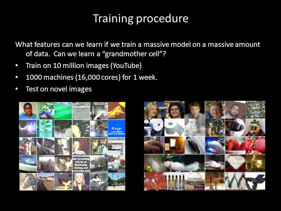 Training procedure What features can we learn if we train a massive model on a massive amount of data. Can we learn a grandmother cell