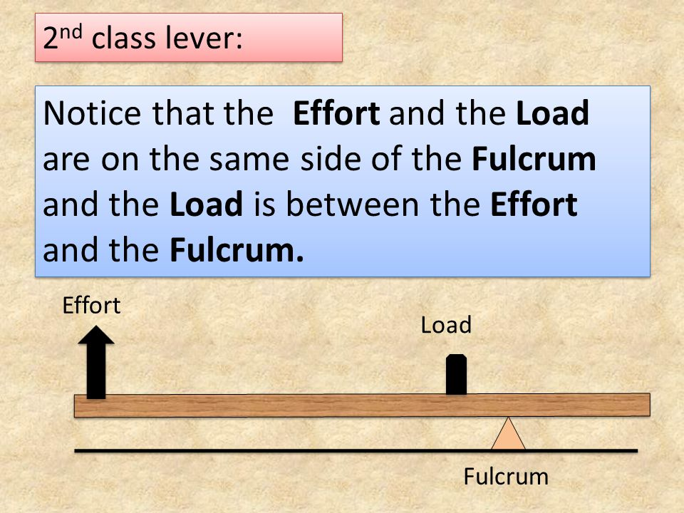 2nd class lever: Notice that the Effort and the Load are on the same side of the Fulcrum and the Load is between the Effort and the Fulcrum.