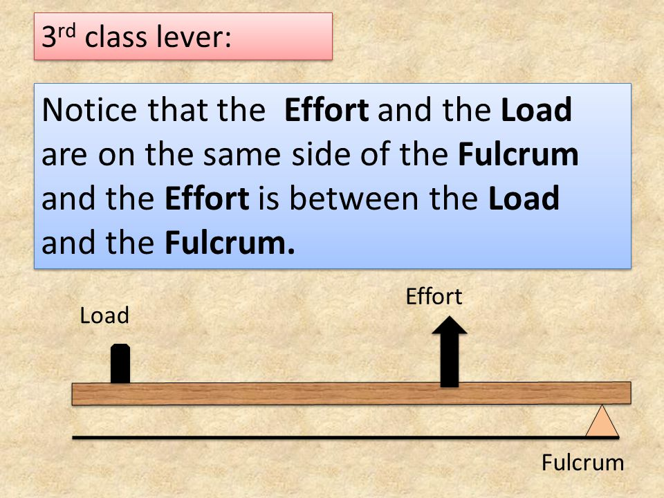 3rd class lever: Notice that the Effort and the Load are on the same side of the Fulcrum and the Effort is between the Load and the Fulcrum.
