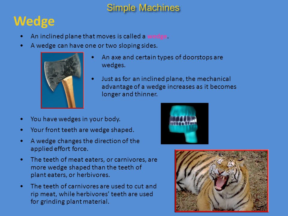 Wedge Simple Machines An inclined plane that moves is called a wedge.