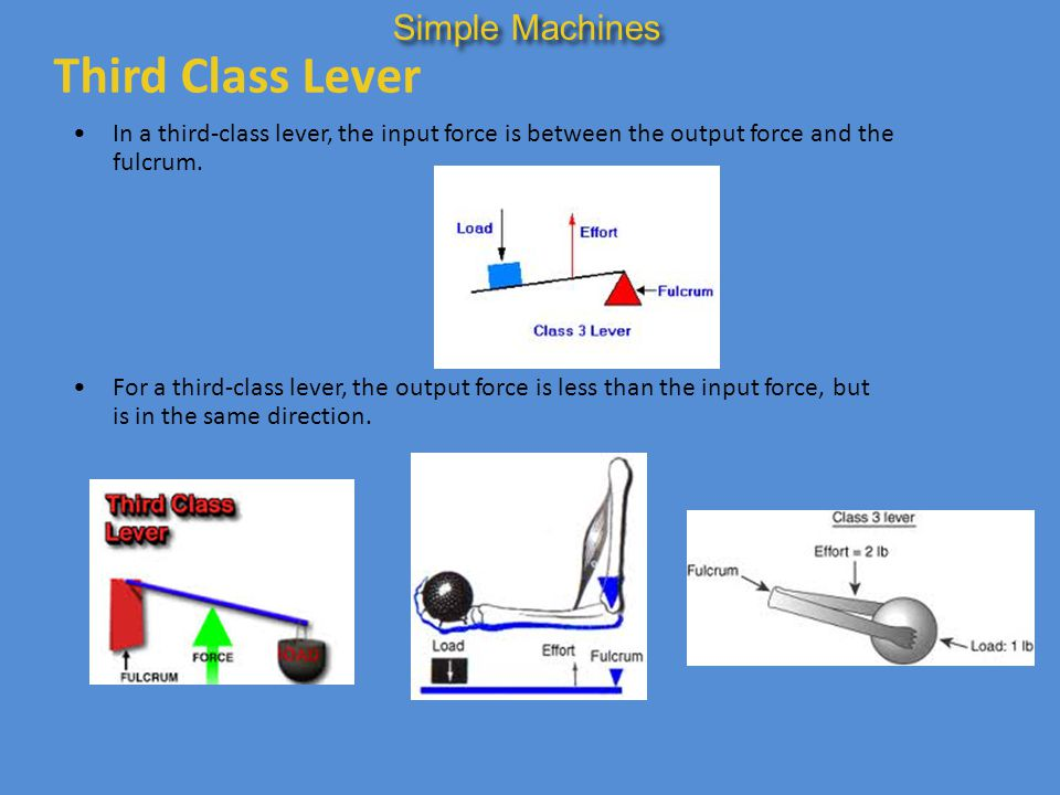 Third Class Lever Simple Machines
