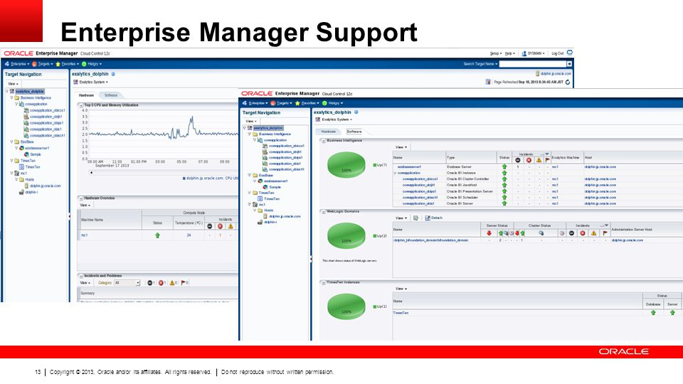 Enterprise Manager Support