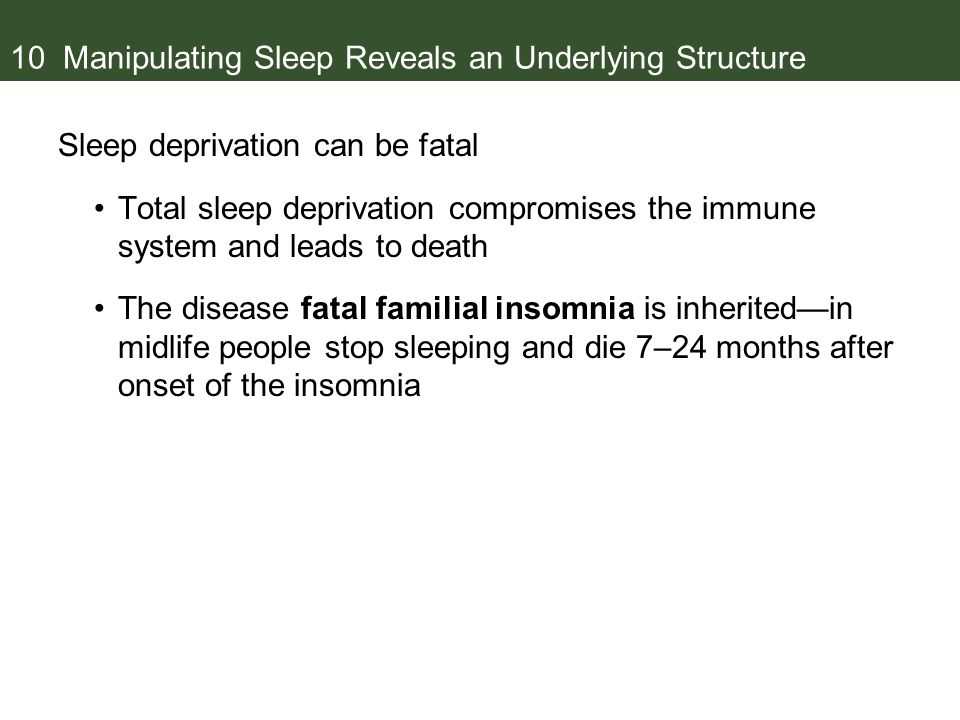10 Manipulating Sleep Reveals an Underlying Structure