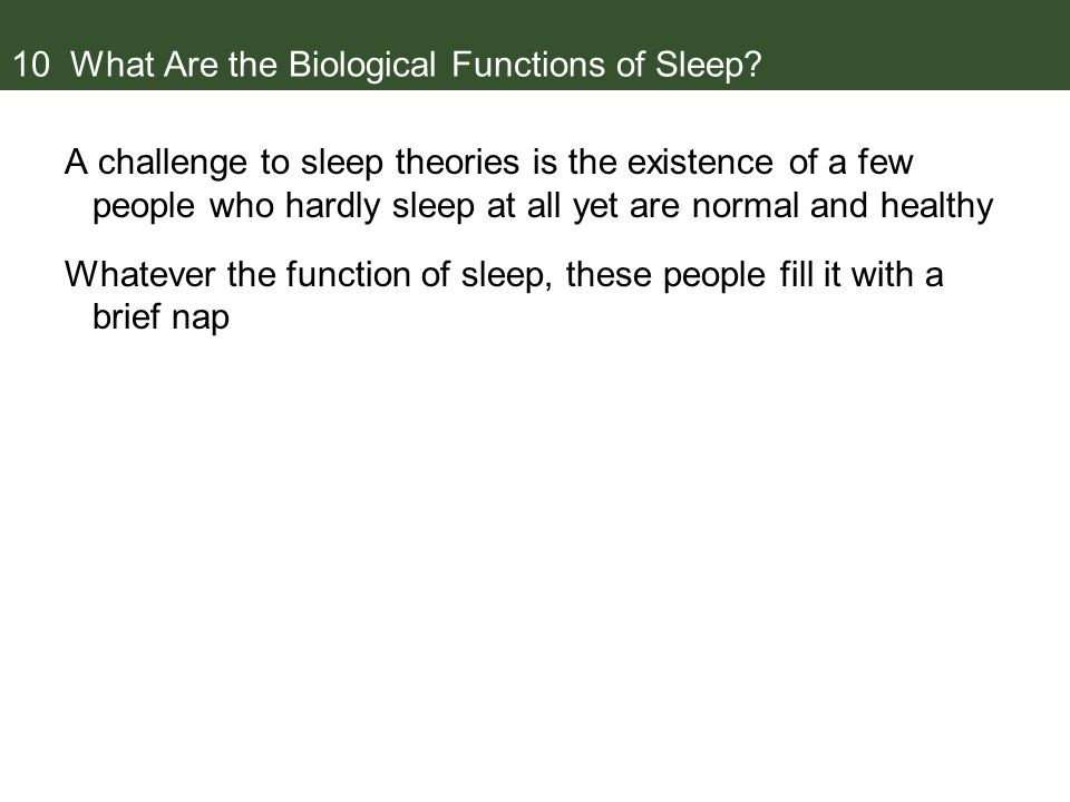 10 What Are the Biological Functions of Sleep