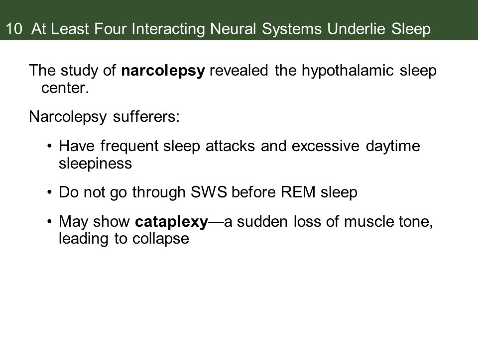 10 At Least Four Interacting Neural Systems Underlie Sleep