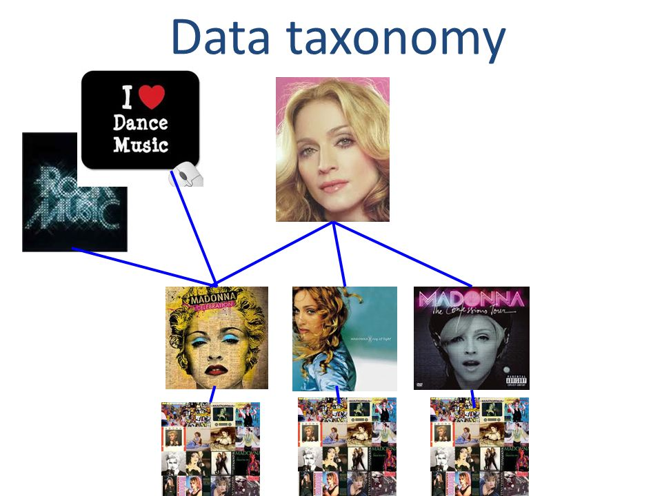 Data taxonomy